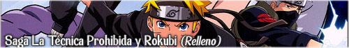 Saga La Técnica Prohibida y Rokubi (Relleno)